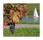 Der Herbst -