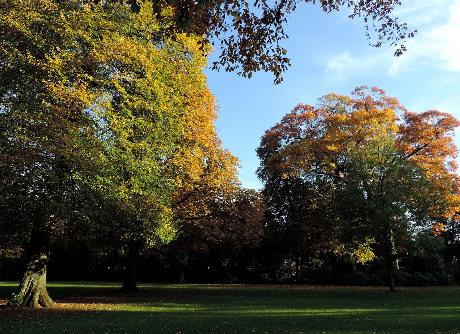 #...Der Herbst.........#