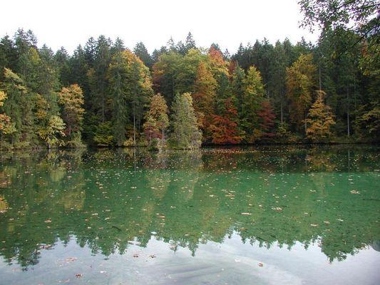 Der Herbst!