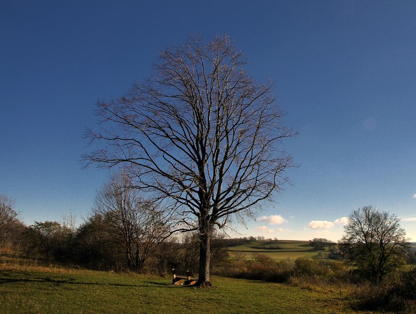 der Herbst auf der Alb
