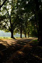 Der Herbst beginnt in Baden-Baden