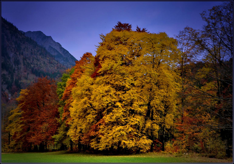 Der Herbst dreht auf !