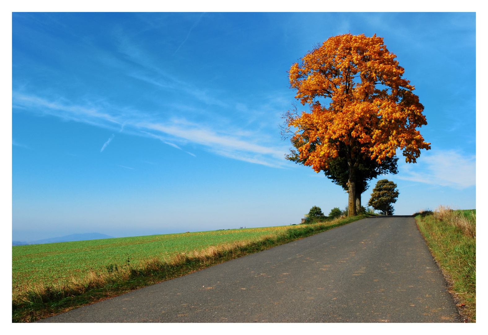 Der Herbst....