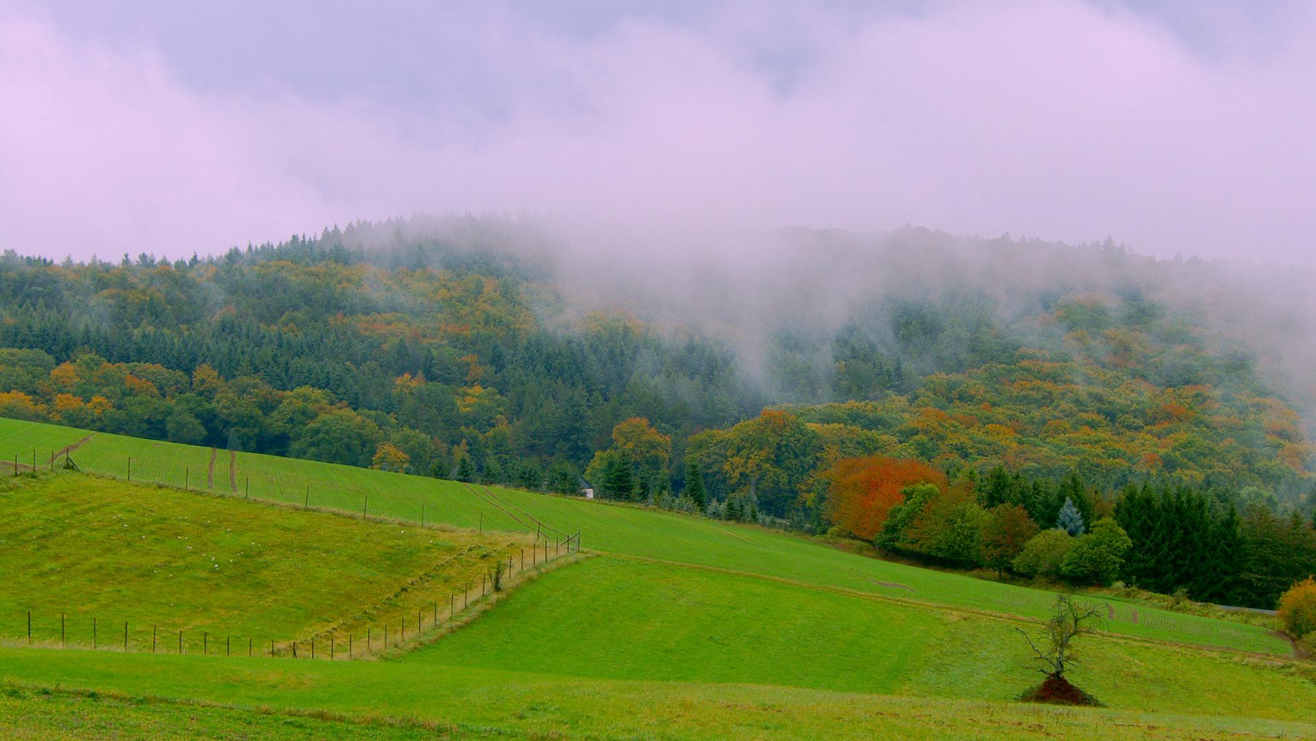 Der Herbst hält Einzug.......