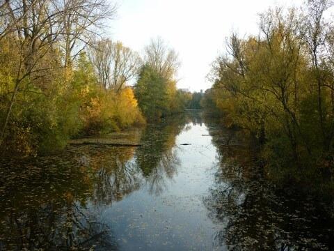 Der Herbst hat auch schöne Seiten
