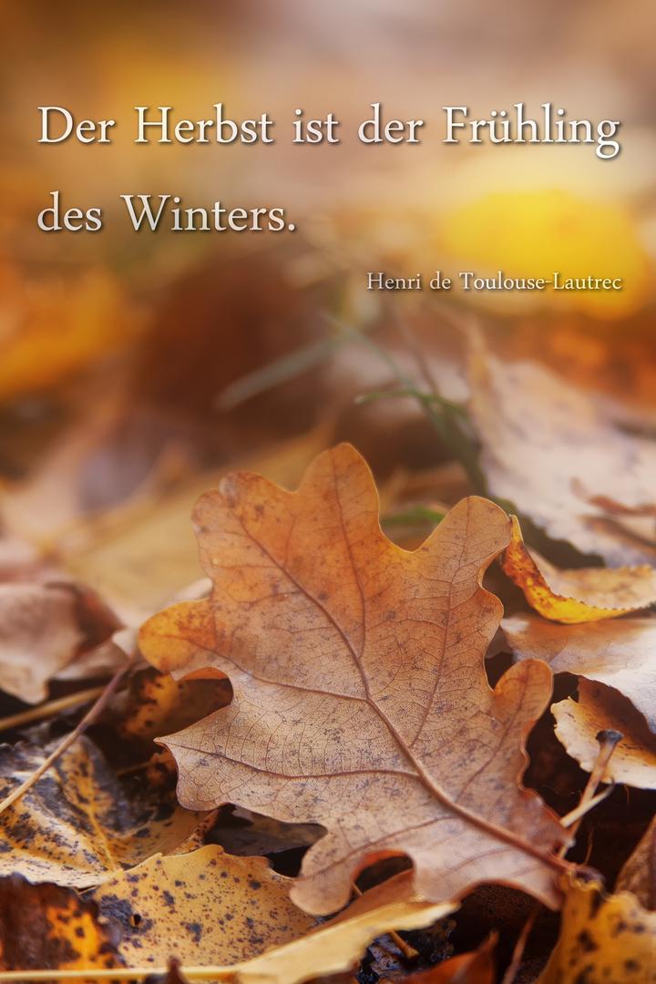 Der Herbst hat soviel schönes.....