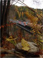 Der Herbst im Harz...