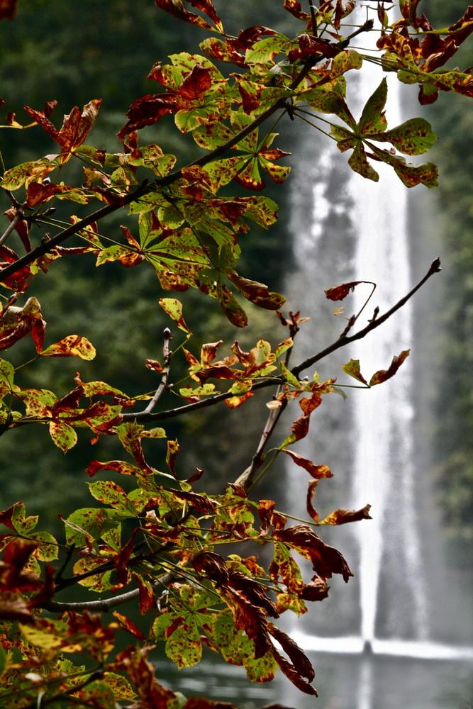 Der Herbst ist auch nun in Oberhausen.
