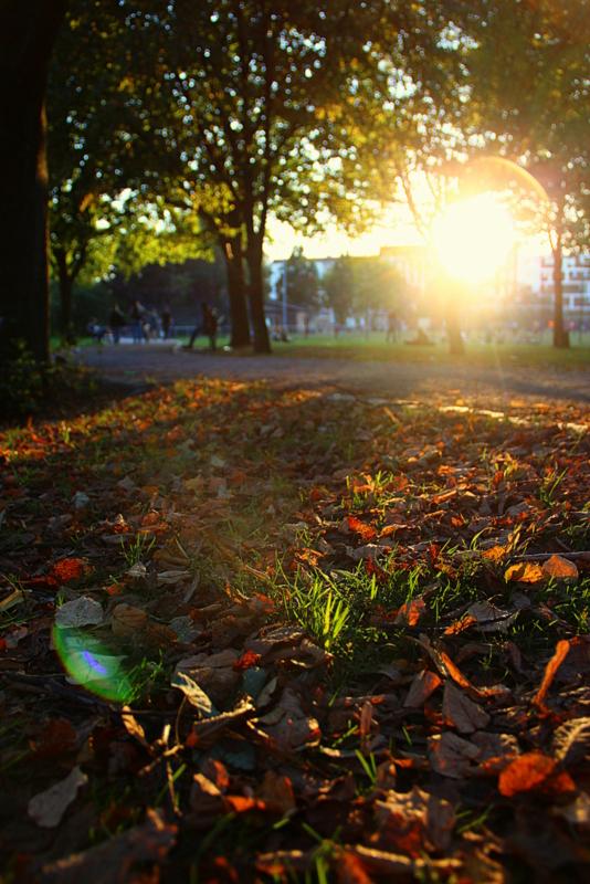 Der Herbst ist DA! Hurra!