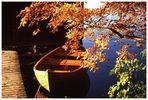 Der Herbst ist da, steigt ein...