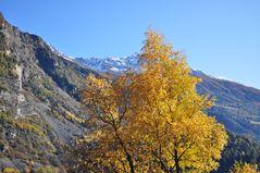 Der Herbst ist da.... und der Winter in Sichtweite.....