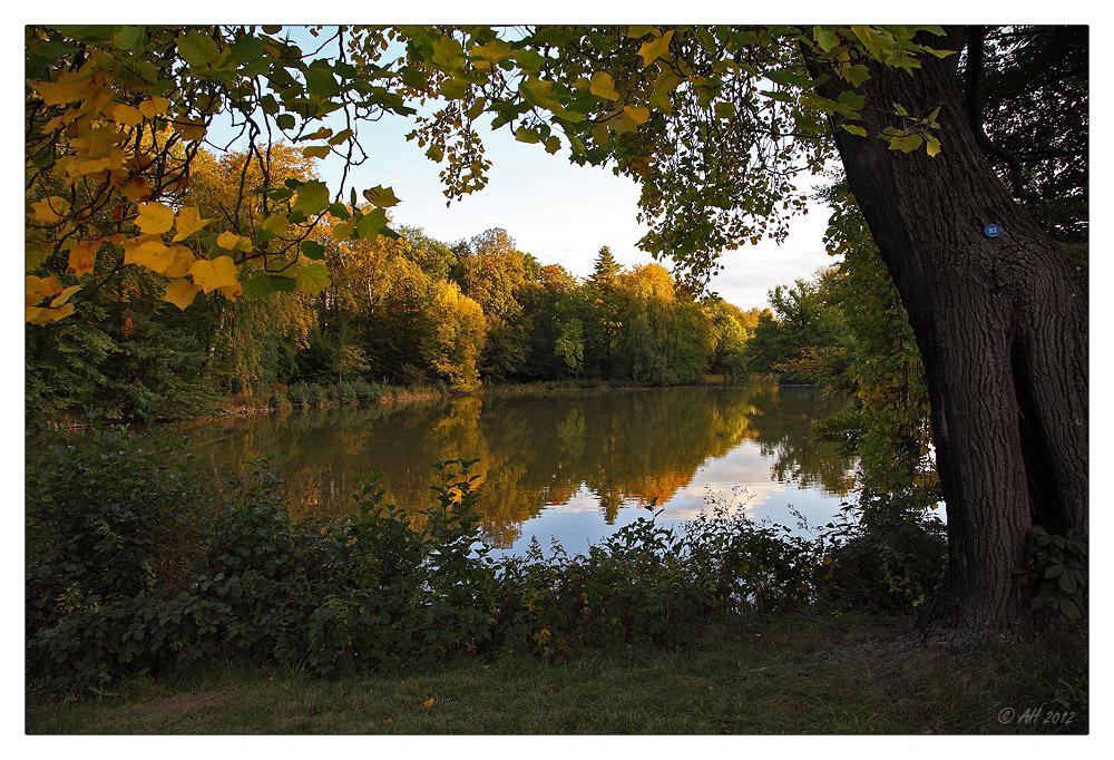 Der Herbst ist gekommen...
