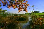 Der Herbst kommt in ganz großen Schritten