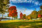 Der Herbst Malt Bunte Farben