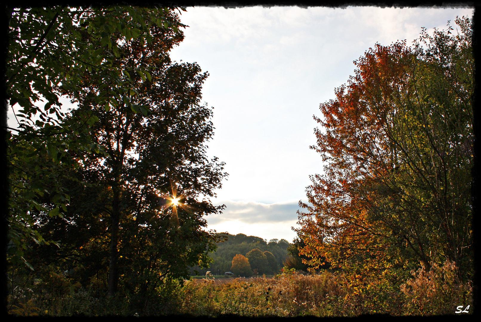 Der Herbst naht mit großen Schritten
