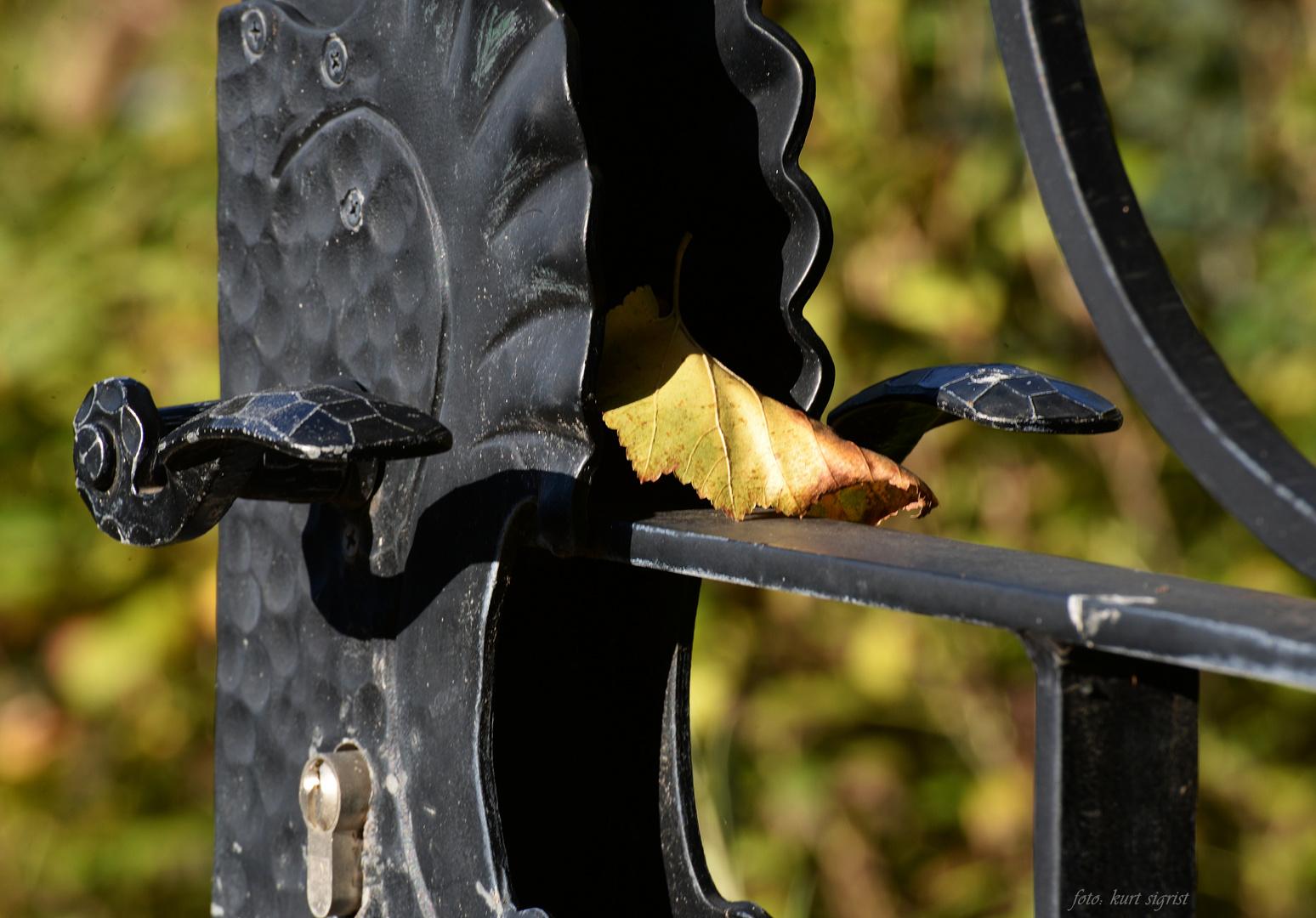 Der Herbst öffnet sein Tor