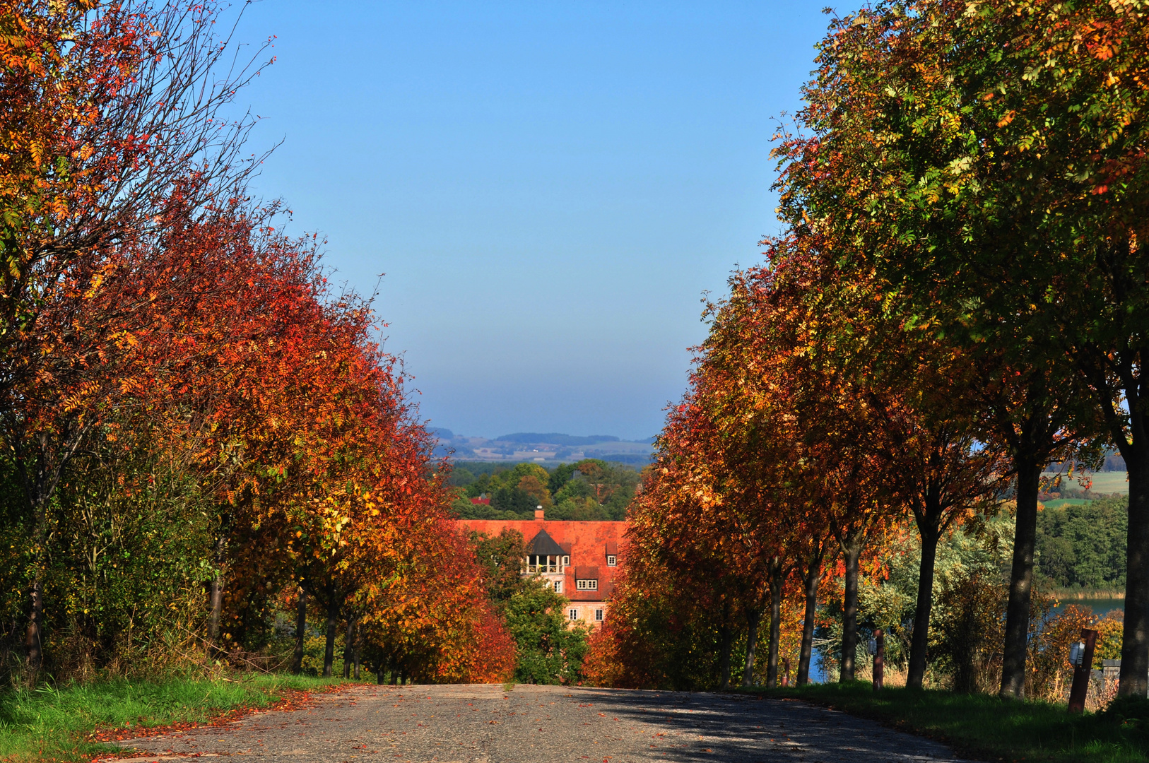 Der Herbst steht auf der Leiter ....