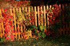 Der Herbst steht auf der Leiter,...