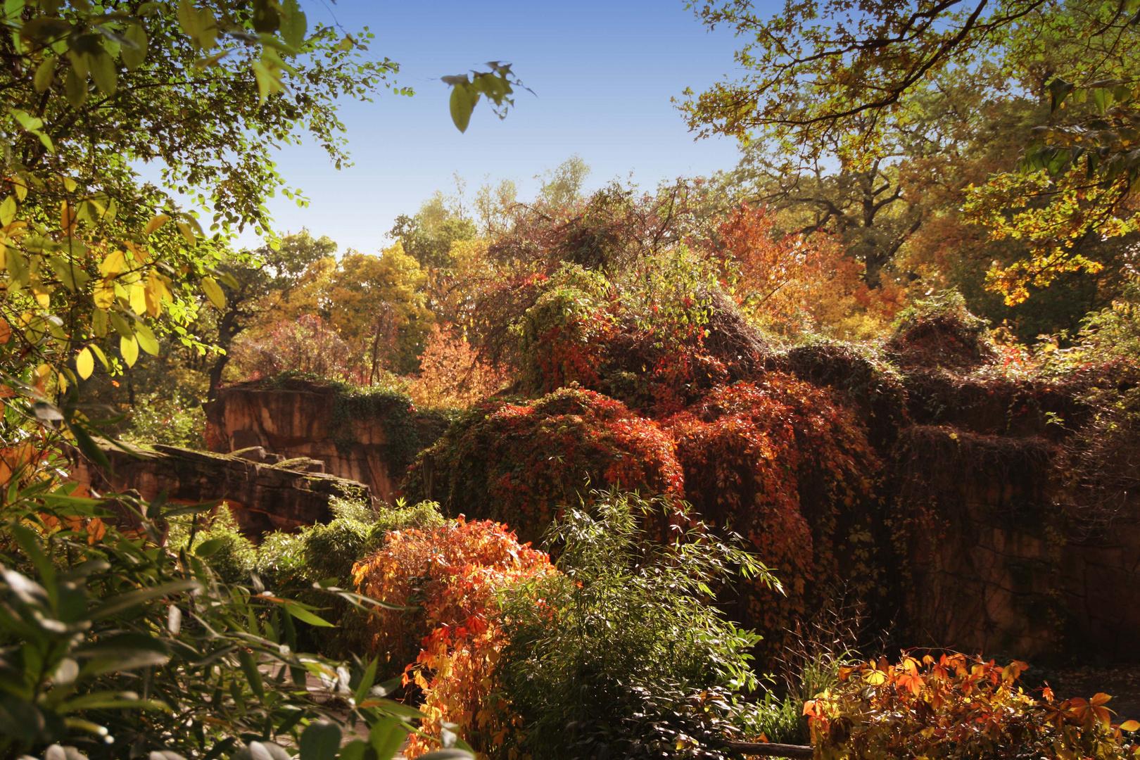 Der Herbst und seine Farben