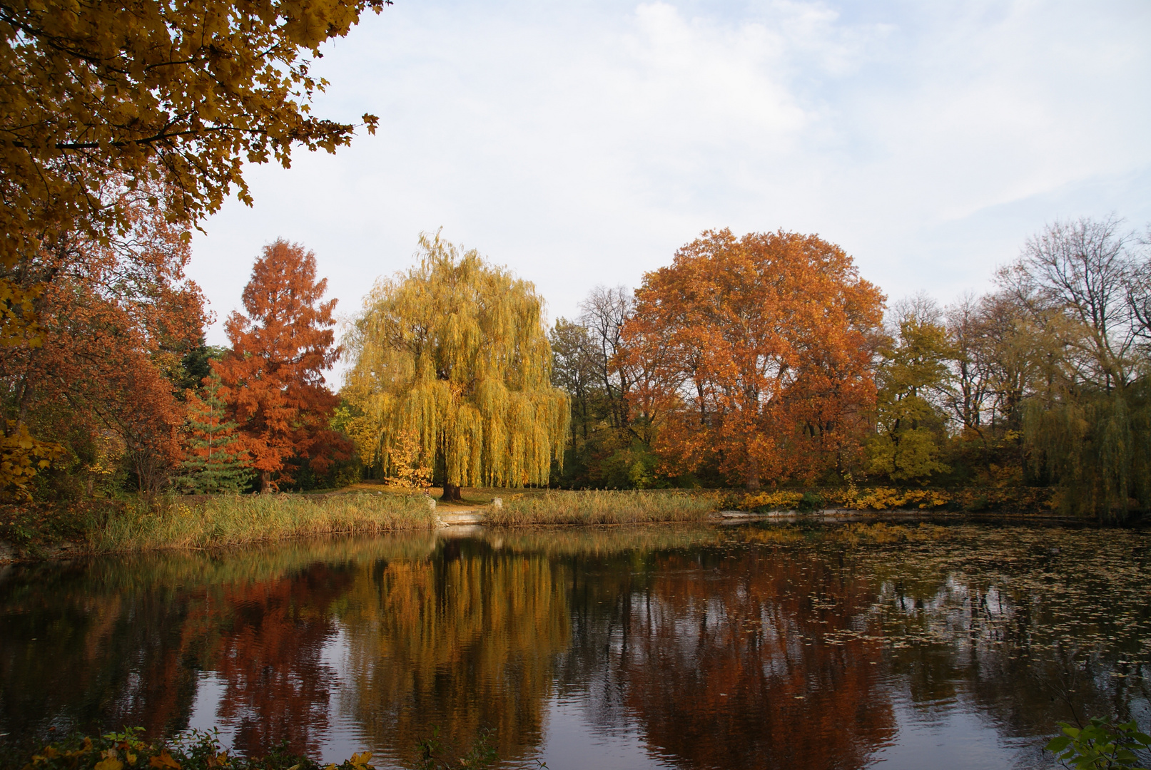 Der Herbst von seiner schönsten Seite