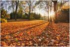 Der Herbst war da