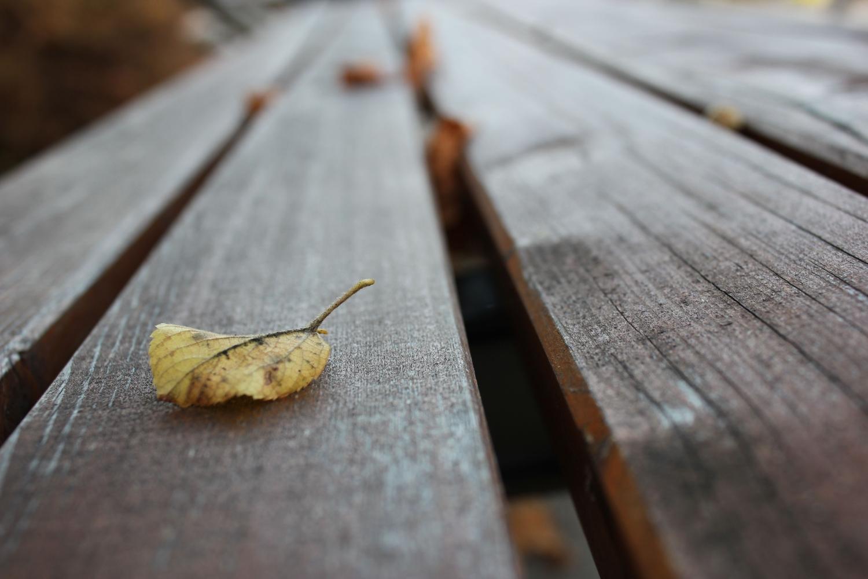Der Herbst wartet