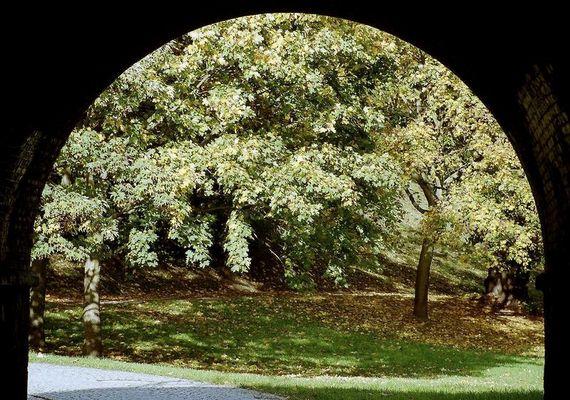 Der Herbstbogen