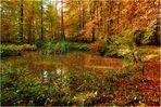 Der Herbstteich