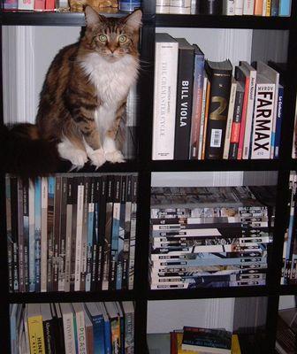 Der Herr der ..... Bücher