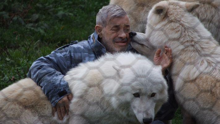 Der Herr der Wölfe