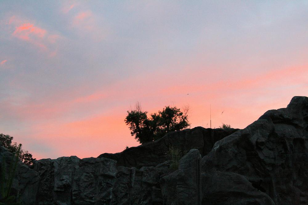 Der Himmel am Abend im Zoo von Gelsenkirchen.