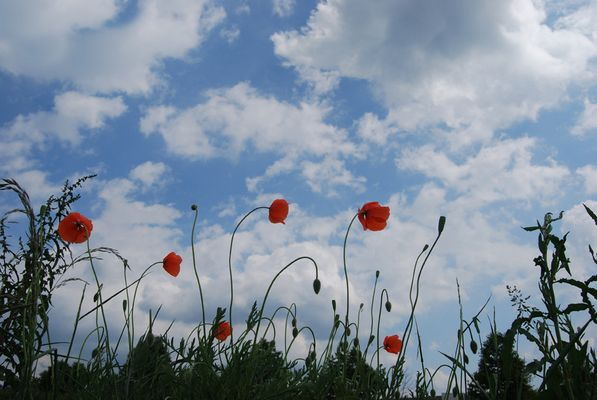 Der Himmel in Frankreich...