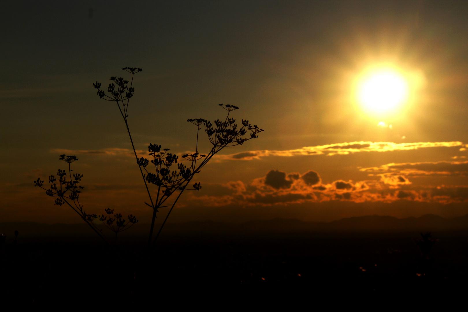 Der Himmel Küsst die Erde...