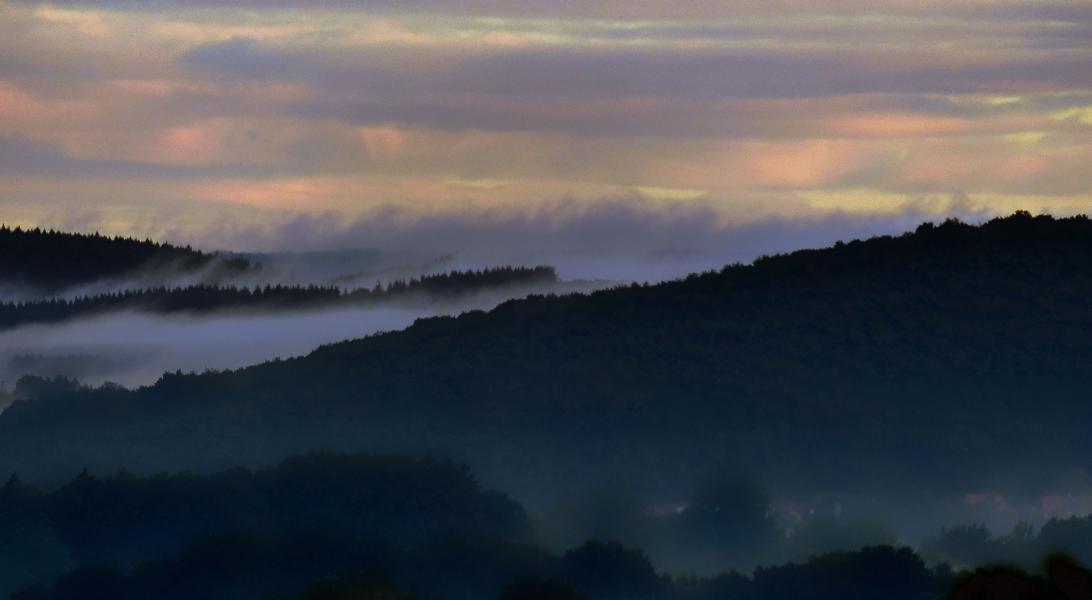 Der Hochwald im Morgennebel