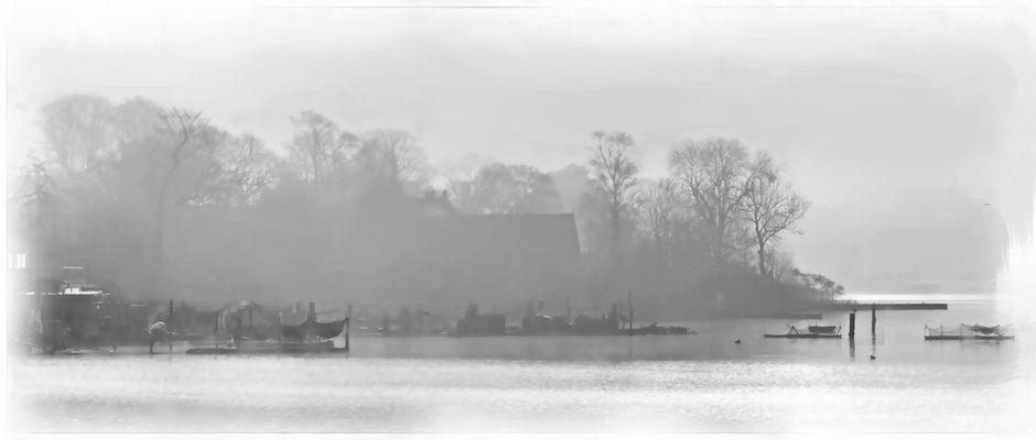 Der Holm im Nebel