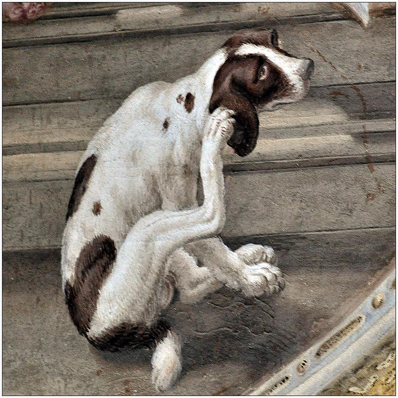 Der Hund von Sigismondo