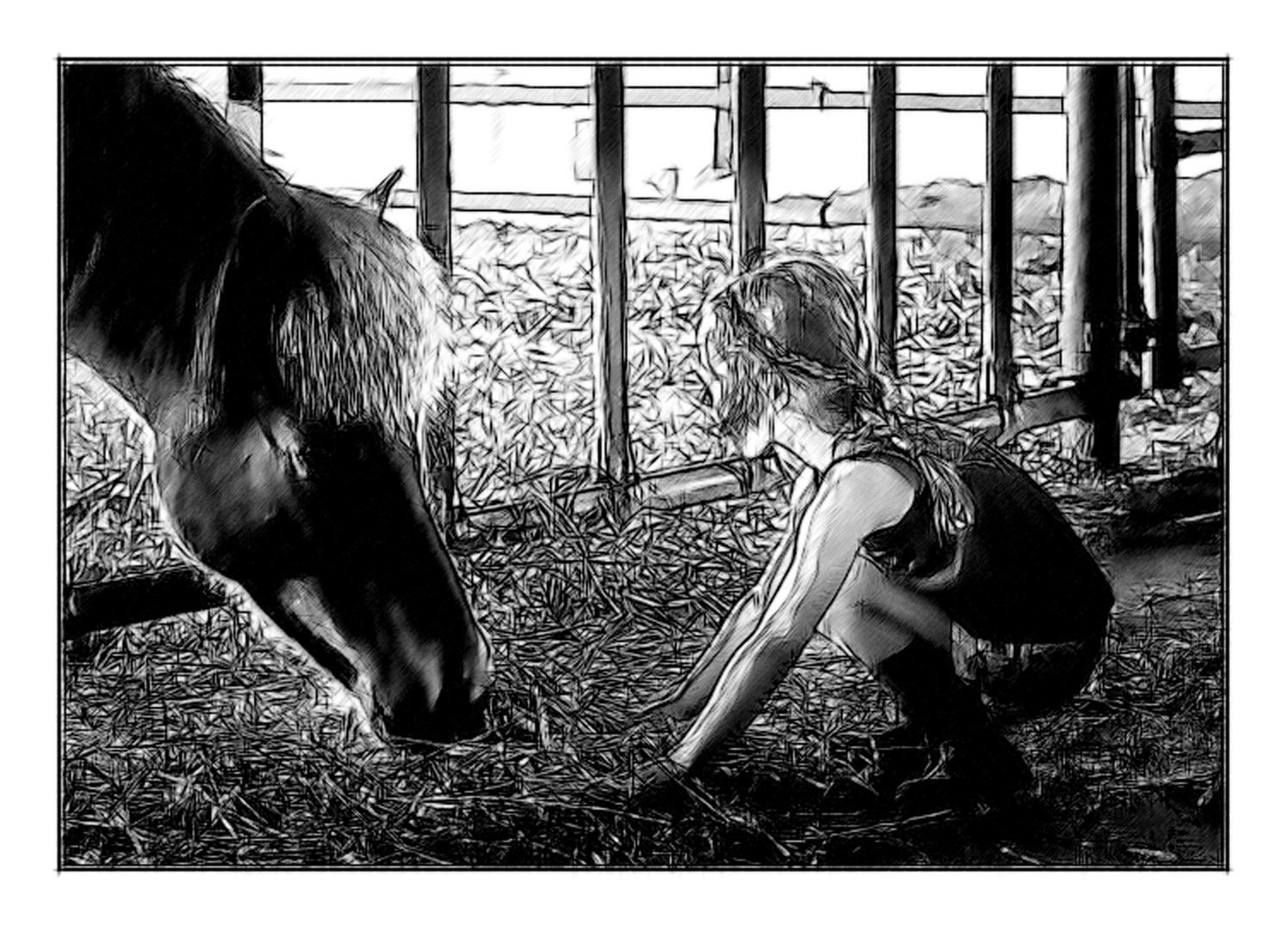 Der Isländer und Das Mädchen 2