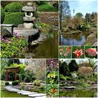 Der Japanische Garten . . .
