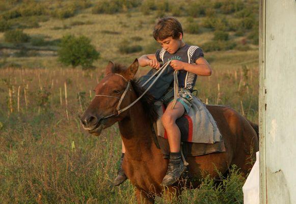 Der Junge auf dem Pferd
