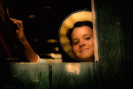 Der Junge im Baumhaus