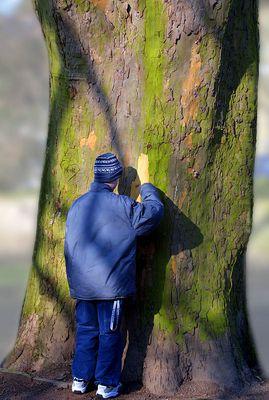 der Junge und der Baum
