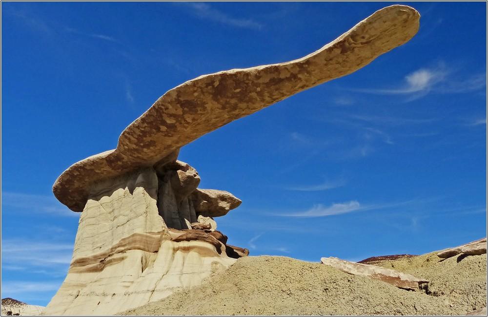 Der King of Wings