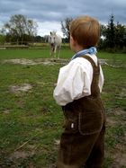 Der kleine Prinz und sein hohes Ross