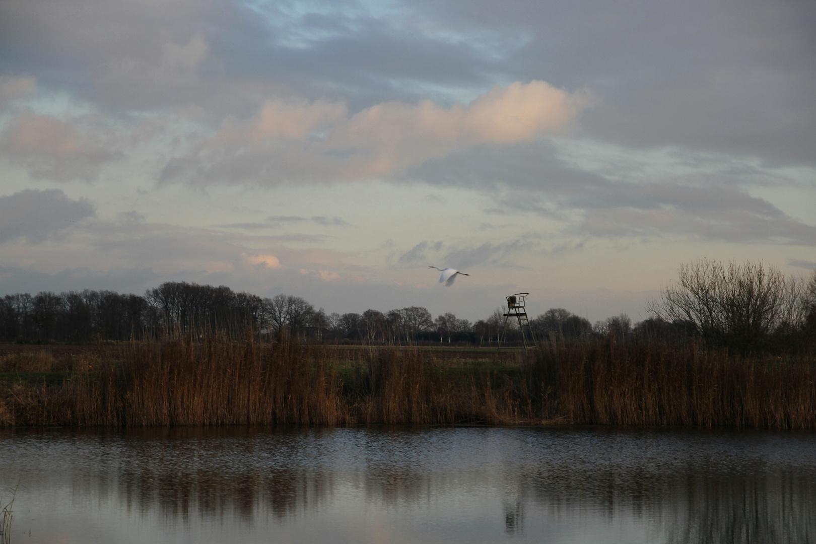 Der kleine See .....