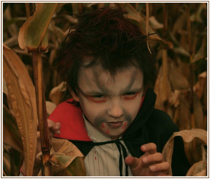 - Der kleine Vampir wünscht Happy Halloween -