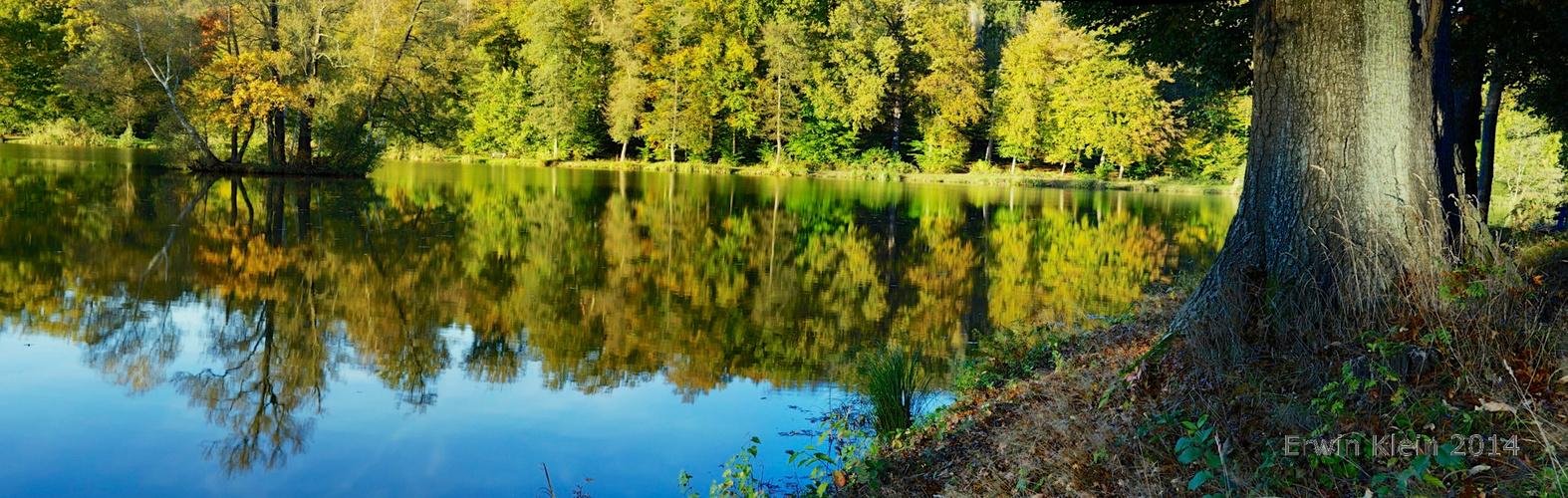 Der kleine Waldsee bei Büdingen lockt mich im Herbst am Meisten!