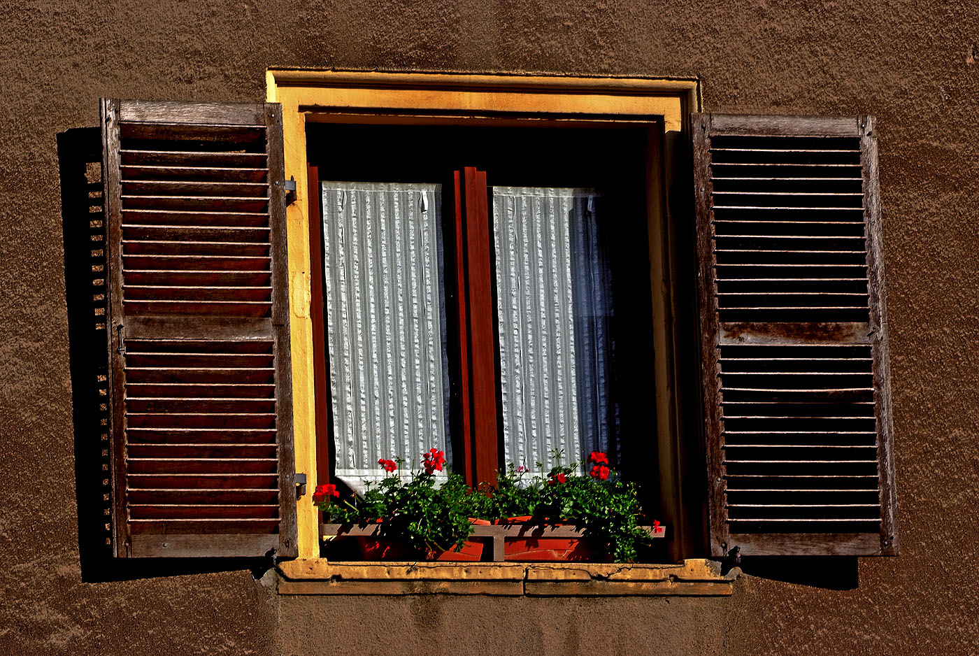 Der Kleingarten auf der Fensterbank ...
