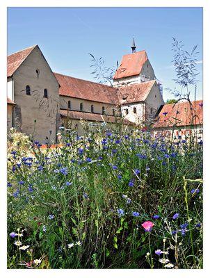Der Klostergarten und die Wildwiese