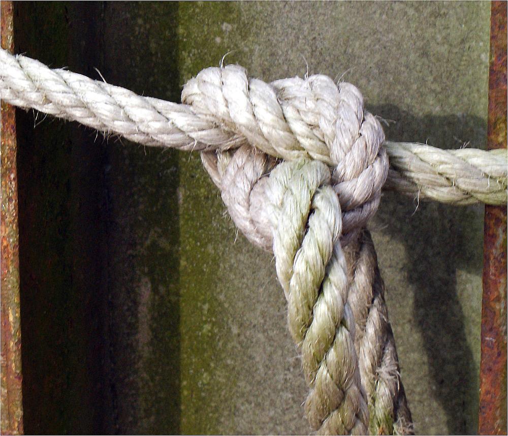 Der Knoten