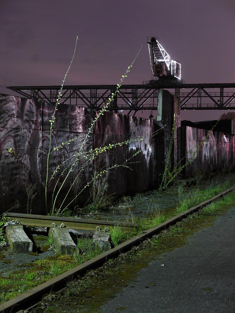 Der Kohlekran bei der Luminale